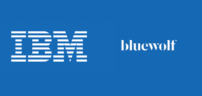IBM and Bluewolf launch new Salesforce practice in India