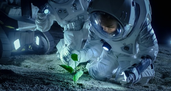 High-tech Crops May Survive Harsh Conditions, Even Space